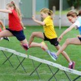 運動会でハードルを飛ぶ画像